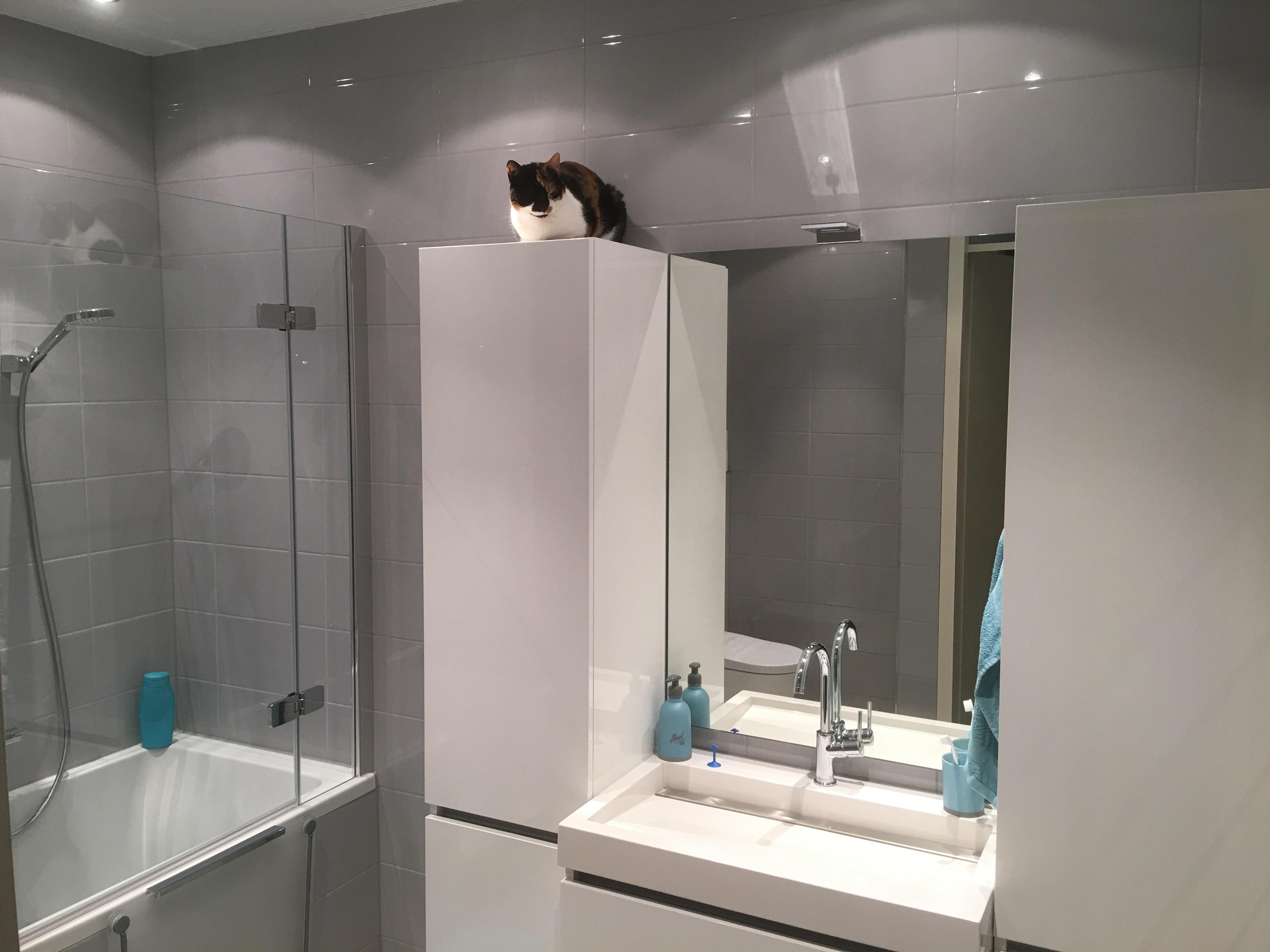 Badkamer met inloop douche bad wiesenekker badkamerconcepten