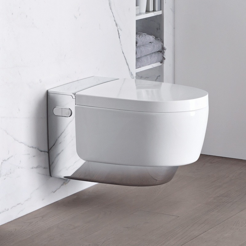 toiletten bidet en urinoir wiesenekker badkamerconcepten. Black Bedroom Furniture Sets. Home Design Ideas
